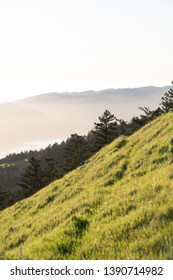 View from Mt. Tamalpais at sunset.