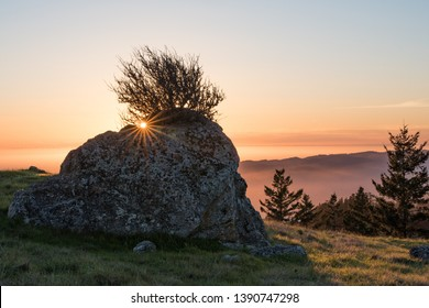View from Mt. Tamalpais at sunset with backlit rock and tree in foreground. Orange, purple and green with yellow sunburst.