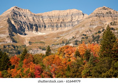 A view of Mt. Timpanogos, Utah, with blue sky and brilliant fall colors.