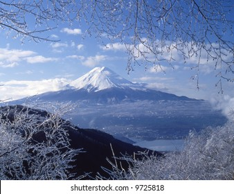 View Mt,Fuji from ice coating on the trees at mount peak