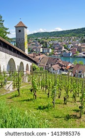 view from Munot Fortress on Schaffhausen,switzerland and river Rhine