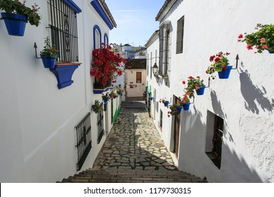 View of a narrow alley in the Spanish city of Malaga. On both sides - white walls of houses, windows with decorative bars and cobalt ornaments, dark blue flower pots with geraniums. Paved pathway