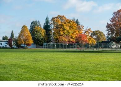 A view of a neighborhood in Burien, Washington in Autumn.
