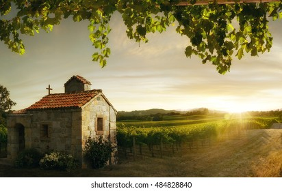 view of nice italian sunny summer countryside landscape