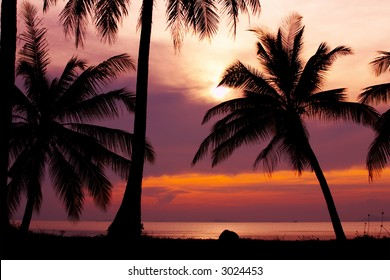 view of nice violet color tropical sunset