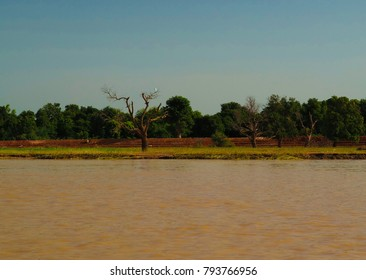 view to Niger river near Niamey at Niger