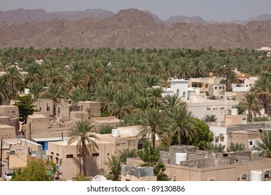 View from Nizwah fort overlooking the village and date palms