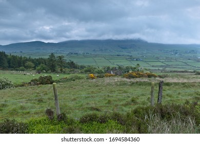 View northeast from the Slievenaglogh Townland toward the valley between Slieve Foy and Slievenaglogh peaks. Slieve Foy is the far ridge.  Cooley Peninsula, County Louth, Ireland.