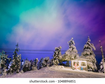view of the northern lights from the top of the hill in Rovaniemi, Lapland, Finland. The great chance to see this beautiful phenomenon that happens in the night between december and march.
