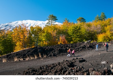 View of northern side of Mount Etna, Sicily, with a pine and beech wood and hikers on a lavic path - Shutterstock ID 745039213