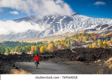 View of northern side of Mount Etna, Sicily, with a pine and beech wood and a hiker on a lavic path - Shutterstock ID 769564018
