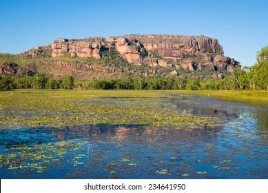 View to Nourlangie from Anbangbang Billabong, Kakadu National Park, Australia
