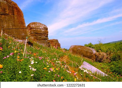 View of the nuture rocky stone mountains and flower garden with bule sky and clody background.
