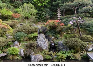 View o Japanese garden