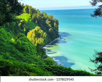 View from the observation deck of the Botanical garden in Batumi. Rest on black sea. Water is blue. Green vegetation in the Botanical garden.