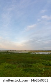 View from the observation deck in Dixon Waterfowl Refuge at sunrise.