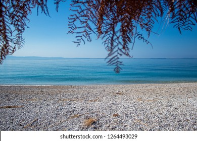 view of the ocean with fern leaves from the shack im under. summer in albania . albanian riviera