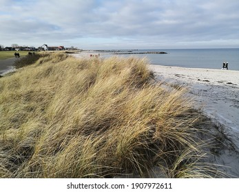 view of ocean with sandy beach and marram grass