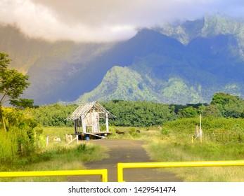 View to an old ranche on Island Kauai, Hawaii.