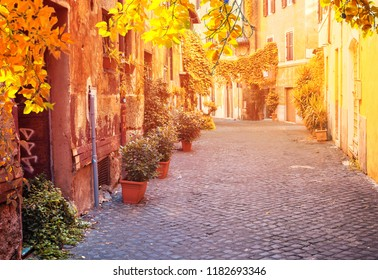 view of old town italian street in Trastevere with sunshine, Rome, Italy at fall