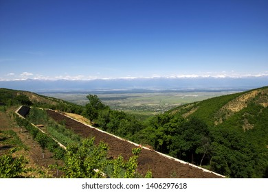 The view on Alazani valley, Georgia