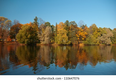 View on autumn landscape of river and trees in sunny day