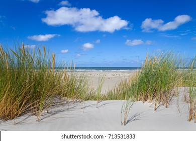 View on the beach and sea from the top of a dune grown with Marram grass