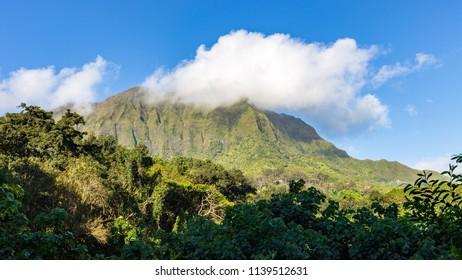 View on beautiful mountain range and hawaiian rain forest from the Maunawili trail on Oahu, Hawaii.