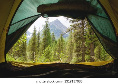 A view on a beautiful mountain slope with green trees through the open window. tent at the camp. View from inside