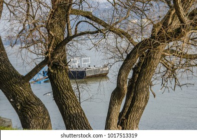 A view on the boat swimming along the river through a tree