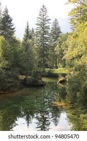 View on the Bohinj lake