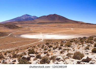 View on Bolivian altiplano with several car trails