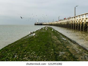 View on breakwater and old wooden pier of Nieuwpoort, Belgium.