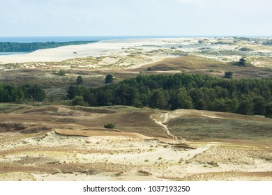 View on the brown dunes and forest of the national park The Curonian Spit