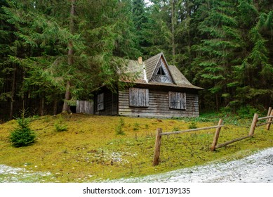 a View on the carpathian pinewood house.