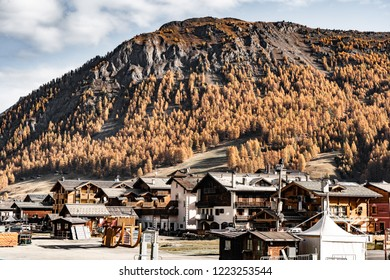 View on the city of Livigno in Italy which is located in the Alp valley; sunny autumn day with wonderfully colored trees