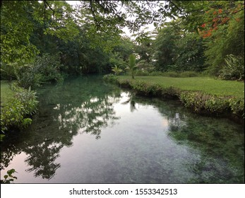View on the clear water of Frenchman's Cove river and the surrounding lush nature located in Portland Parish in Jamaica