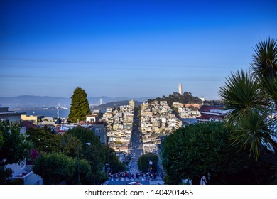 View on Coit Tower from Lombard street in San Francisco at dusk. Popular tourist spot with panoramic view on the city hills and landmarks.
