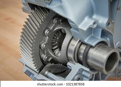 View on cross section of new car truck differential with visible gears bearings on shaft seals cone gears. Tractor truck car gearbox differential. New clean open gear box differential gears wheels