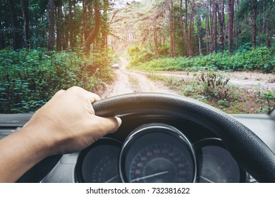 View on the dashboard of the truck driving.The driver is holding the steering wheel. Forest road is in front of the car.