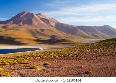 View on deep blue lake at Altiplanic Laguna (Lagoon) Miscanti in Atacama desert with partly snow capped cone of volcano Meniques in the background - Chile