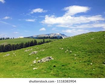 View on the …tscher from the Feldwiesalm, Austria