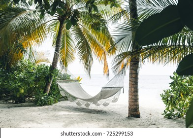 View on hammock between two palm trees on the beach with white sand