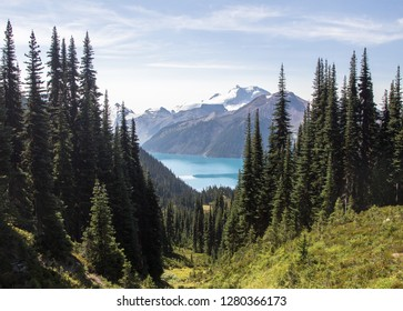 The view on the hike up to Panorama ridge looking down over Garibaldi lake in British Columbia, Canada.