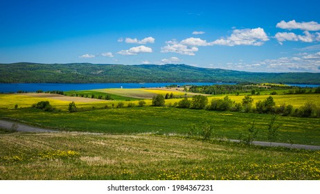 View on the Lake Matapedia, the Chic Chic mountains and the countryside full of blossoming dandelions from the Val Brillant Belvedere in Quebec (Canada)