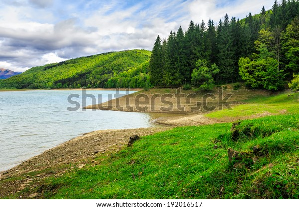 view on lake near the pine forest on mountain background