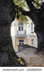 View on light yellow facade with small balcony between two old gnarled linden trees.