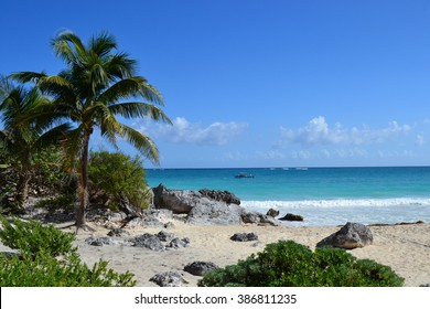 View on the ocean with white sand and palms
