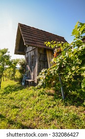 View on an old wooden hut in the vineyard, Southern Styria Austria