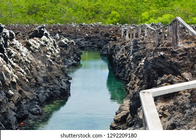A view on one of the channels through the landscape of the Galapagos islands